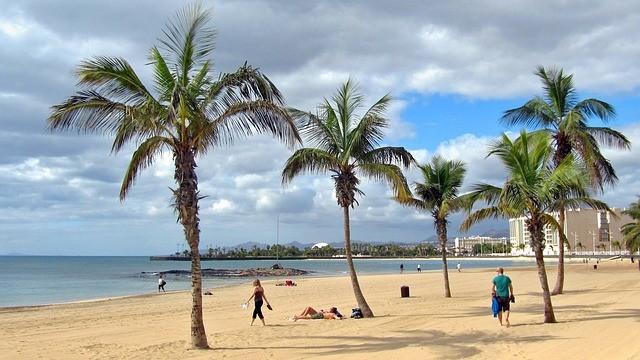 Canarische Eilanden Lanzarote strand palmbomen