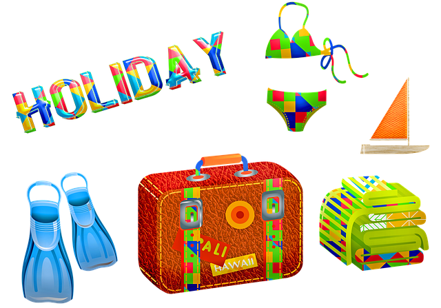 Vakantie bagage